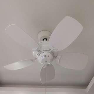 Crestar Idol Ceiling Fan 30 Inch CSL01 (Reserved)