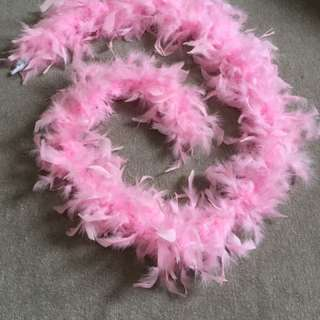Baby Shower Feathers Decorations
