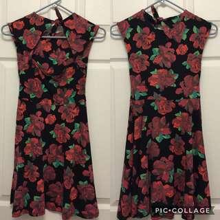 Aritzia Talula Floral Dress