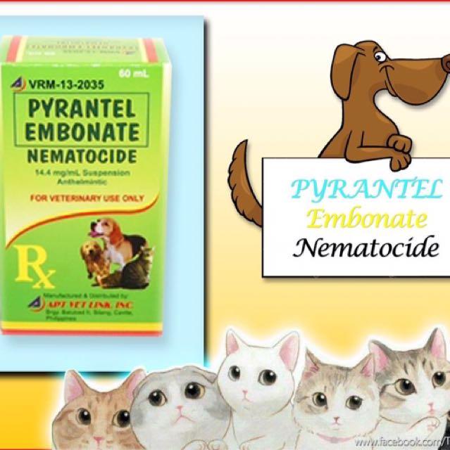 Pyrantel Ebonate Dewormer (15 / 60 ml)