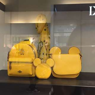 Coach Disney Mickey mouse 米老鼠 迪士尼
