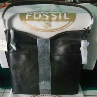 Ready Fossil