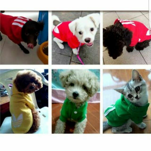 Adidas Dog Cat Hoodie Clothes Shirt Pet Supplies On Carousell