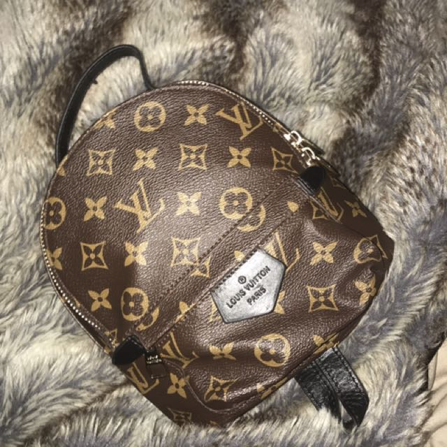 Louis Vuitton Palm Springs Back Pack