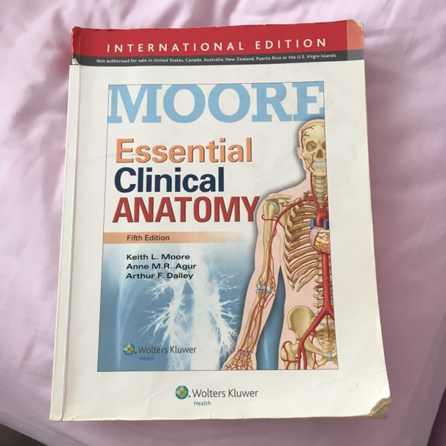 Moore Essential Clinical Anatomy, Books & Stationery, Textbooks on ...