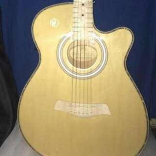 RJ Professional Acoustic Prairie - Folk