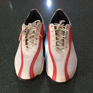 Adidas Golf Shoes US 7