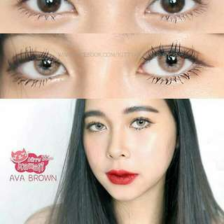 Softlens Kitty Kawaii Mini Ava Brown Plano