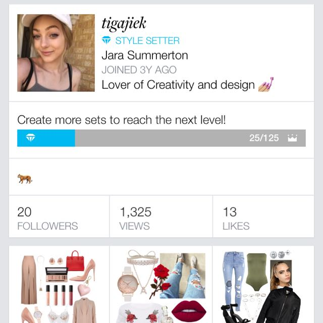 Follow My Polyvore Account