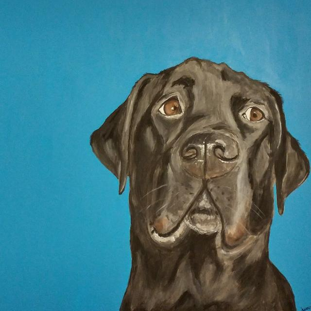 Hand Painted Pet Portraits, Dog Painting, Pet Painting