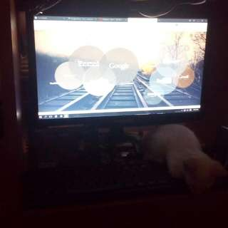 Desktop Set Bundle Or Not CPU Monitor Keyboard And Mouse AMD Athlon XII 2.80ghz