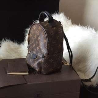 Louis Vuitton Palmspring Backpack Mini