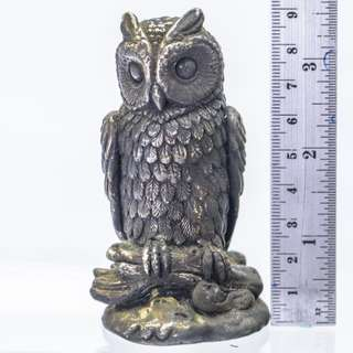 OWL COLLECTION #3