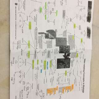 H2 Biology interrelating topics mindmap + summary notes