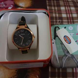 Fossil Gray 3077