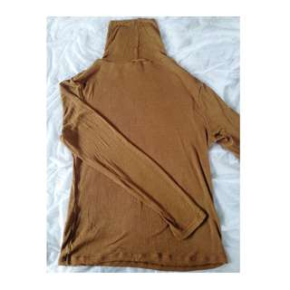 Glasson's Brown Long-sleeved Turtle Neck