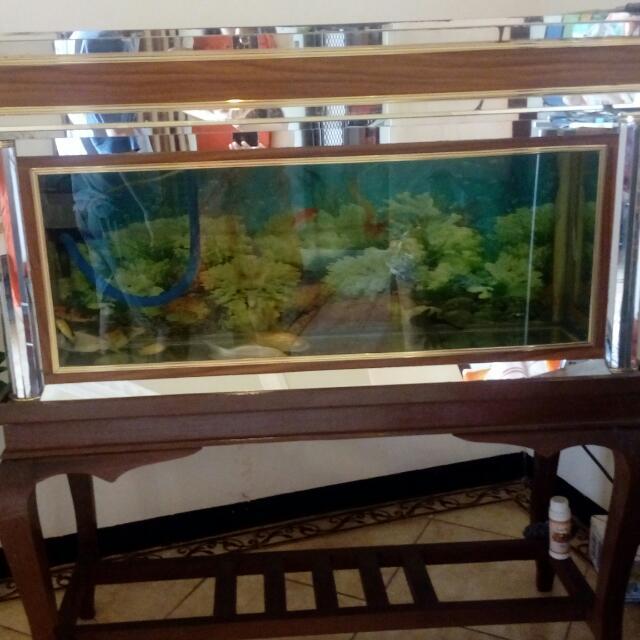 Aquarium full set + meja