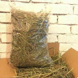 Premium Timothy Hay,  Rabbit Food,  Guinea Pig Food