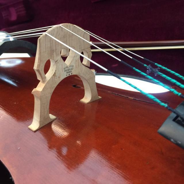 Andreas Eastman Cello VC805