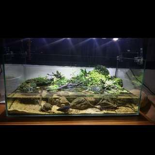 Empty Glass Terrarium With Working Lamp And Water Pump
