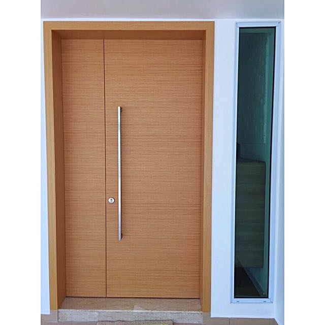 Promotion Fire Rated Main Door With Free Delivery And