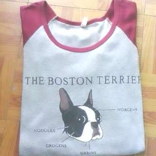 Boston Terrier Pullover