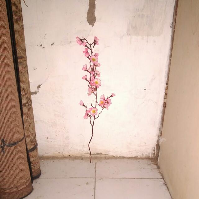 101 Gambar Rumah Bunga Sakura Terlihat Keren