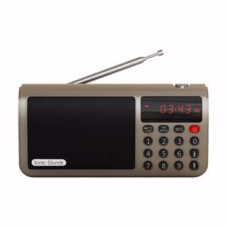 Sonic Sounds T50 Portable FM AM Stereo Radio Speaker Mp3 Music Player SD/TF Card for PC iPod Phone (Gold)