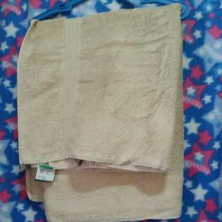 Imported Brown Towel (Large)