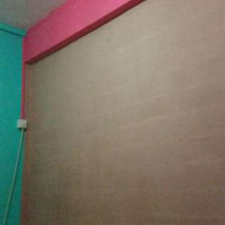 House Painting Affordable Price