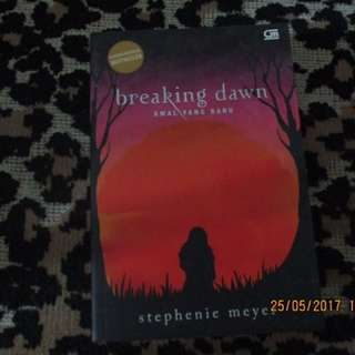 Breaking Down (twilight Series)