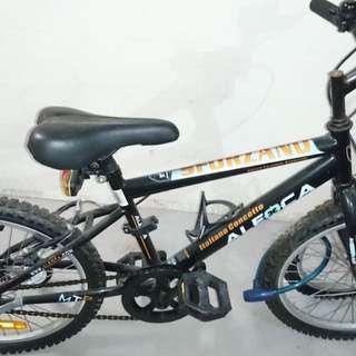 "18"" Wheel Bicycle"