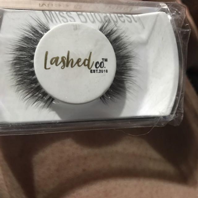 Brand New Eyelash Extensions