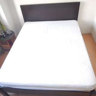 Most Comfortable Bed Ever!