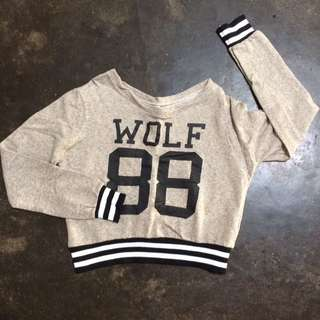Used: Wolf Cropped Top