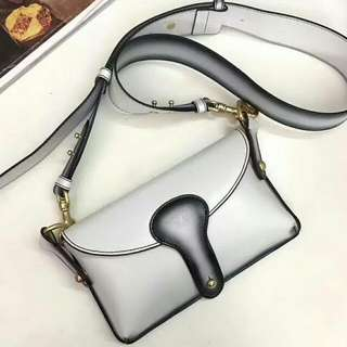 DIOR CALFSKIN MINI BEE SADDLE BAG