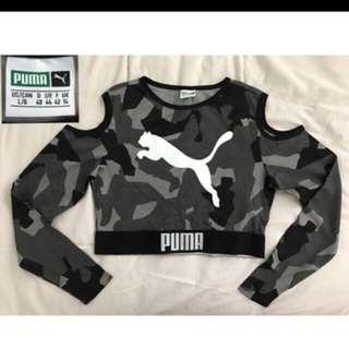 Puma Crop