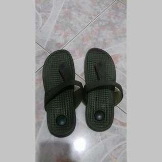 Green Slipper