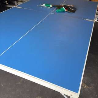 *WANT GONE* Table Tennis