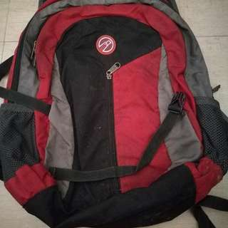 Hawk School Bag