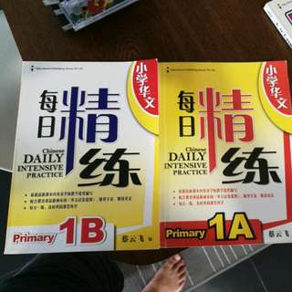 Chinese Daily Intensive Practice 1A And 1B