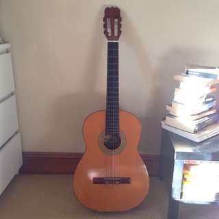 Classic Acoustic Guitar By Riviera