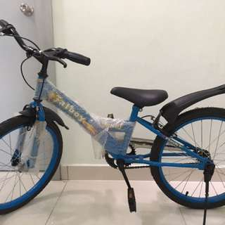 Junior Bicycle