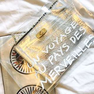 Clear Chic Clear Clutch With Silver Bag