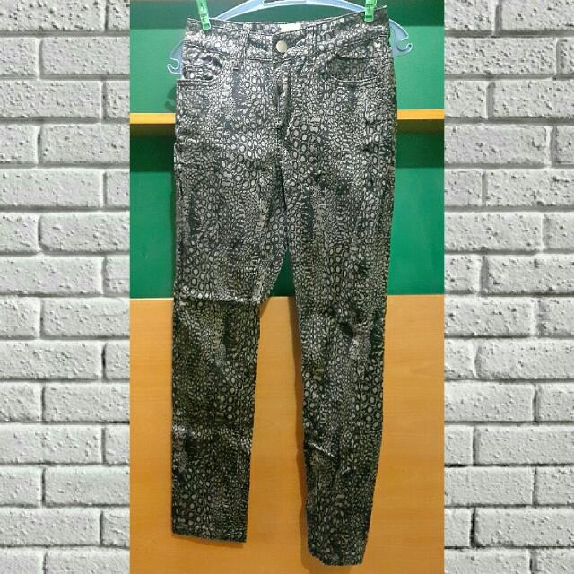 Leopard Pants (fits small to medium)