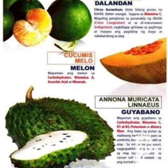 Pre Order First Vita Plus  Guyabano Soursop Fruit