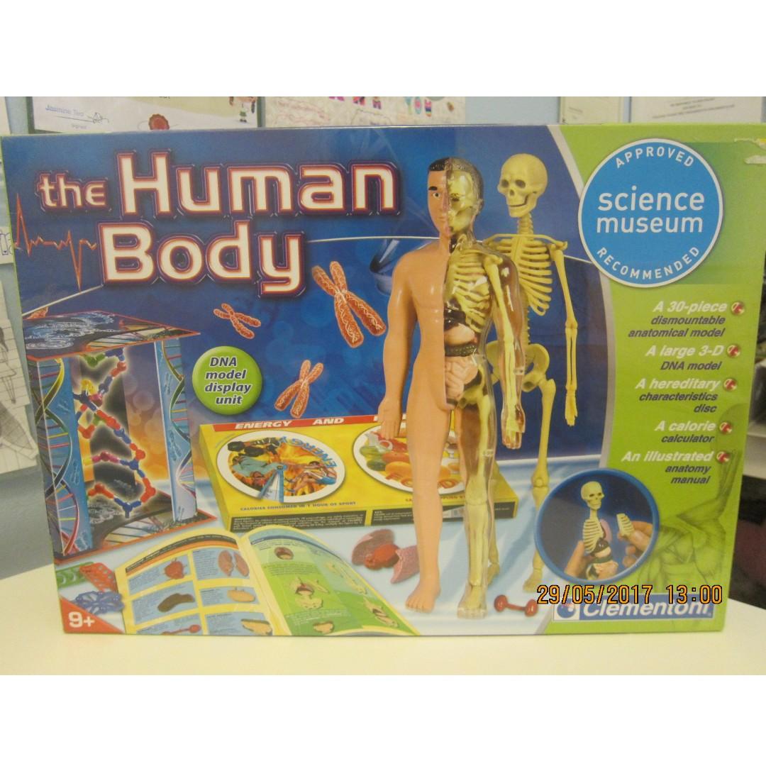 The Human Body Anatomy - Clementoni (BRAND NEW), Babies & Kids, Toys ...