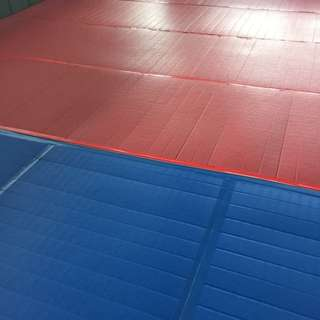 BN Professional MMA Roll-up Tatami Mat (blue / Red)