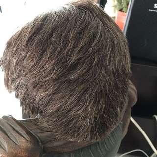 100% Human Hair Top Wig