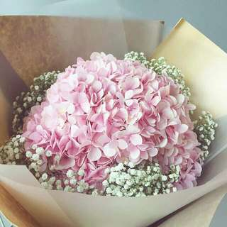 Pink Hydrangeas And Baby Breath Bouquet - Hydbadet